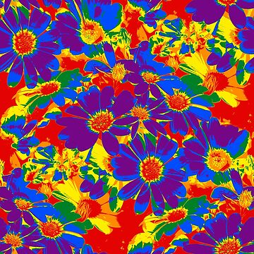 Pride Cape Daisies by NeonPink