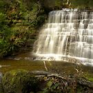 Ladder Creek Falls, Tasmania by Kevin McGennan