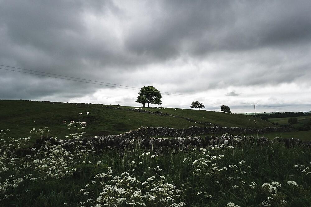 English countryside by roamantiker
