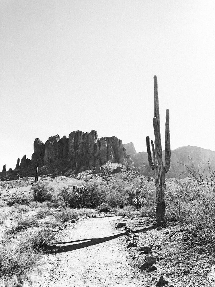 Arizona Desert by adventuremagic