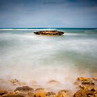 Reef top and misty waves by Ralph Goldsmith