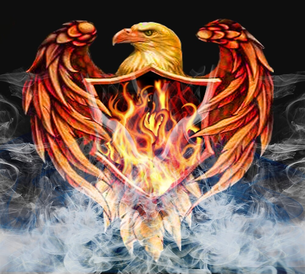 eagle by Amgad Matta