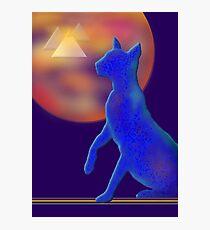 'Bast'  Cat Variations #1, Egyptian Photographic Print