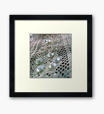 Sheer  Framed Print
