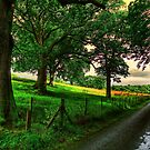 Green lane's by doublevision
