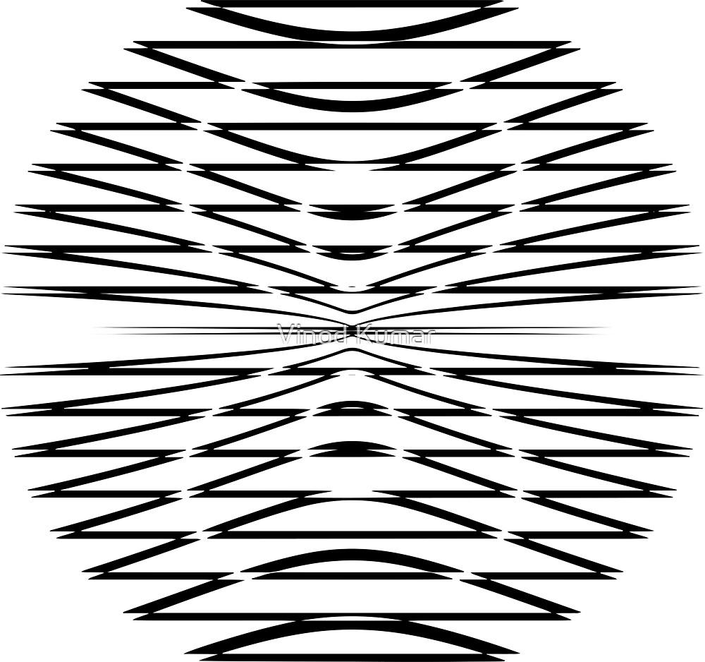 Optical Illusion by Vinod Kumar