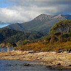 Mt Eliza, S W Tasmania by Richard  Stanley