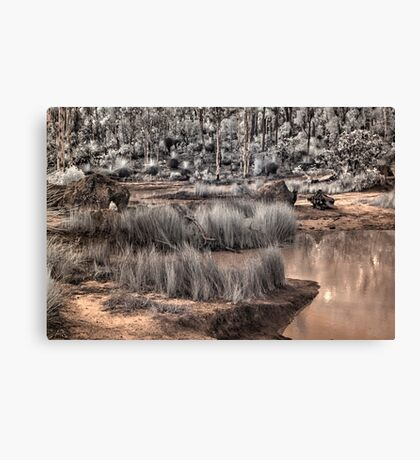 forest in infrared Canvas Print