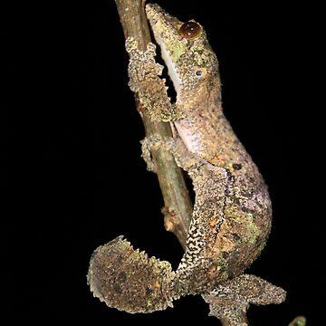 mossy leaf-tailed gecko by gruntpig