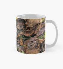 Summer is gone, Autumn is finally here Mug