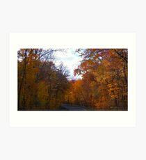 Autumn Drive Art Print
