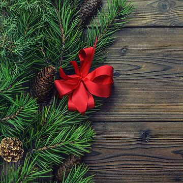 Rustic Holidays by Rudravi