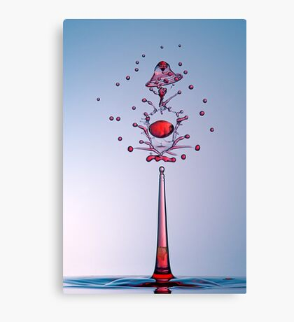 Scepter Canvas Print