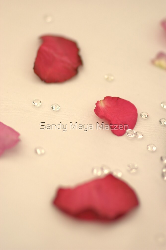 rose petals by Sandy Matzen