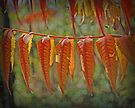 Autumn Leaves by G. David Chafin