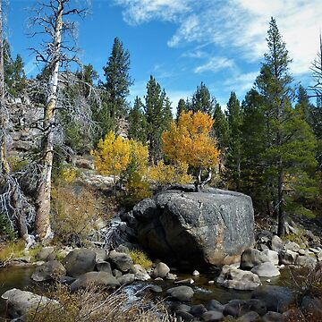 Autumn Rocks – Hope Valley, Alpine County, CA by RKreklow