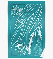 Calligrapha Beetles and Black Willow Poster