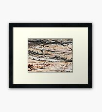 raw & rustic 1 Framed Print