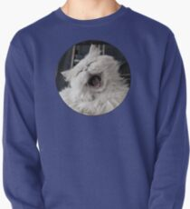 They say that NOTHING beats a good belly laugh!  Pullover