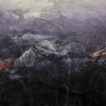 Desperation – Artax by DAstora