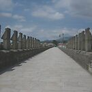 Roman Bridge!... by sendao