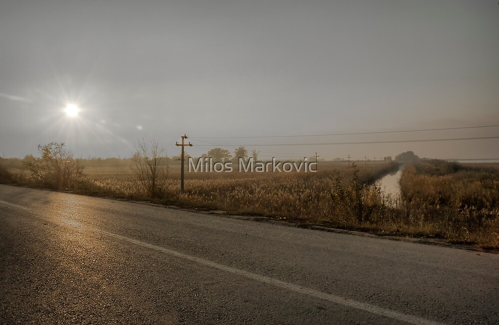 Along the road by Milos Markovic