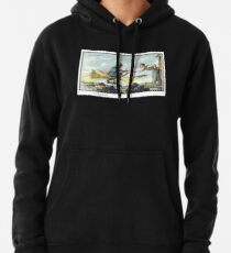 Future Air Mail Pullover Hoodie