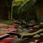 Finnich Glen by Colstie