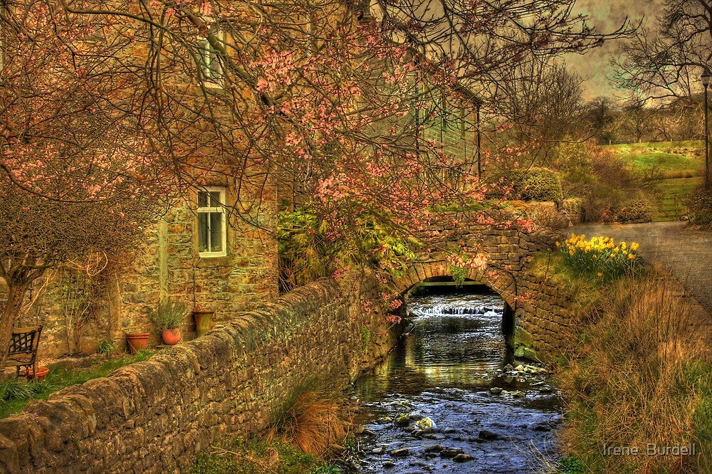 Babbling Brook in Springtime  by Irene  Burdell