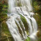 Champagne Falls, Tasmania by Kevin McGennan
