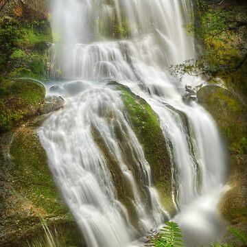 Champagne Falls, Tasmania by kevinmcgennan