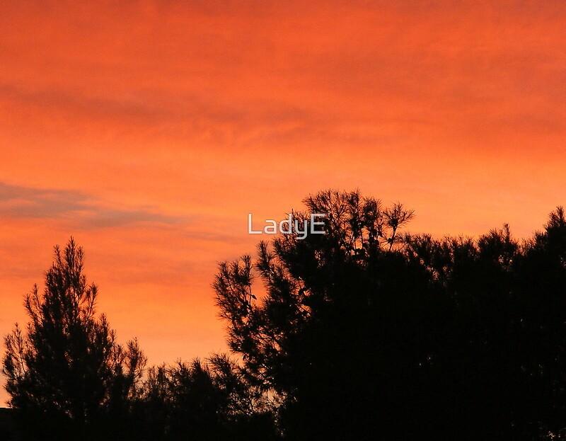 OCTOBER SUNSET  by LadyE