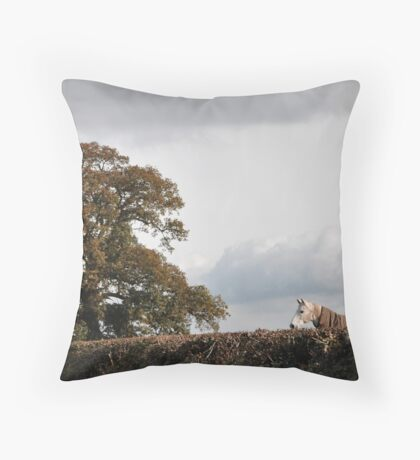 For The High Jump Throw Pillow