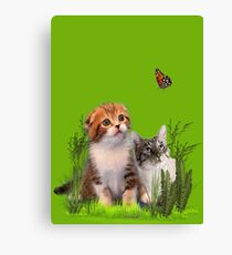 Kittens and a Butterfly. Canvas Print
