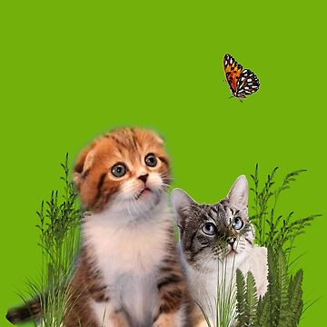 Kittens and a Butterfly. by NadineMay