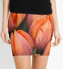 Bunch of Joy Mini Skirt