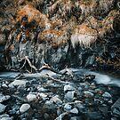 Small stream in Skaftafell by Pascal Deckarm