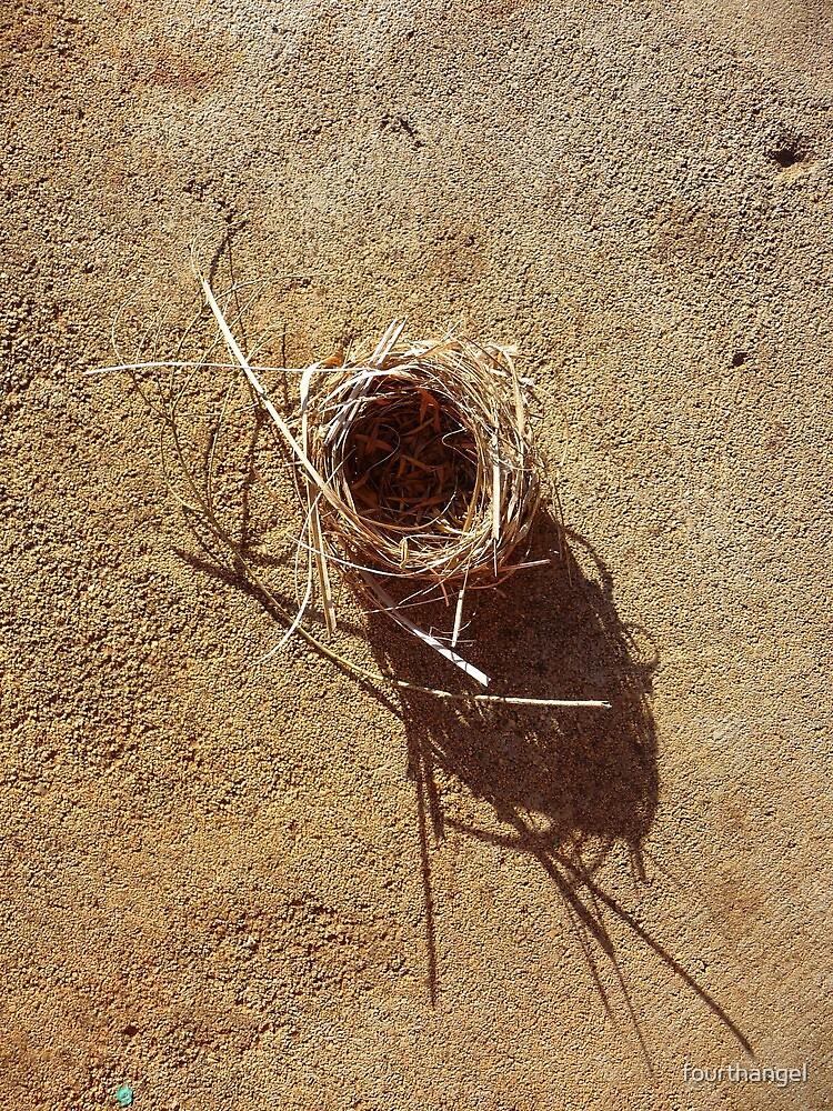 Empty nest by fourthangel