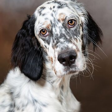 English setter phone case by Penel