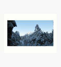 Snowshoeing Art Print