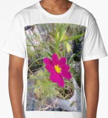 Flowers #flowers #nature #flower #leaf #summer #outdoors #grass #garden #environment #bright #season #petal #tree #horizontal #greencolor #colorimage #plant #nopeople #closeup #colors #day #fragile Long T-Shirt