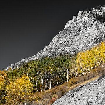 Waning Gibbous Moon Autumn Monarch Pass BWSC by mrbo