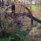 Wagon Wheels by Lynn Moore