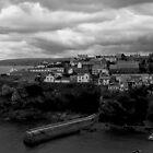 Port Isaac, Devon by Rodney Bantleman