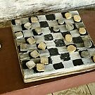 Checkers Anyone? by Kenneth Hoffman