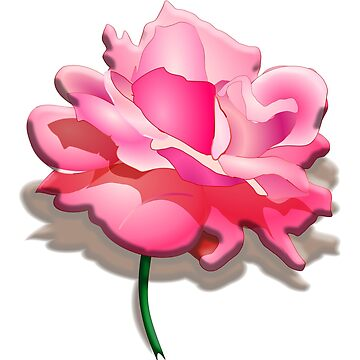 Rose, Love, compassion, Romance, Poetry by TOMSREDBUBBLE