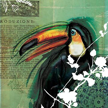 Toucan- Antique Plate- Mixed Media by Narelle