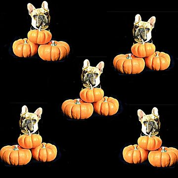 Halloween French Bulldog  by ritmoboxers