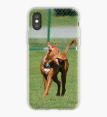 Pharaoh Hound iPhone-Hülle & Cover