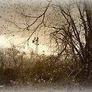 The Windmill Speaks by Lynn Moore